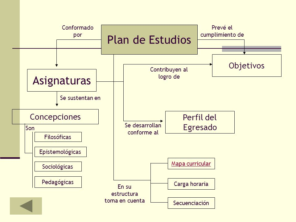 Plan de Estudios Asignaturas Objetivos Concepciones