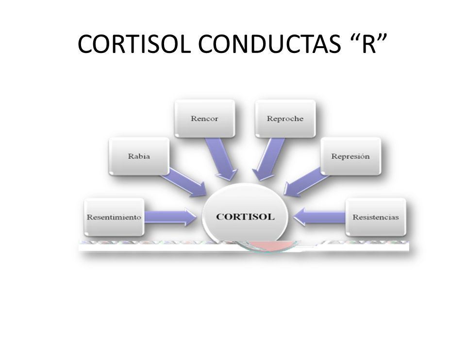 CORTISOL CONDUCTAS R