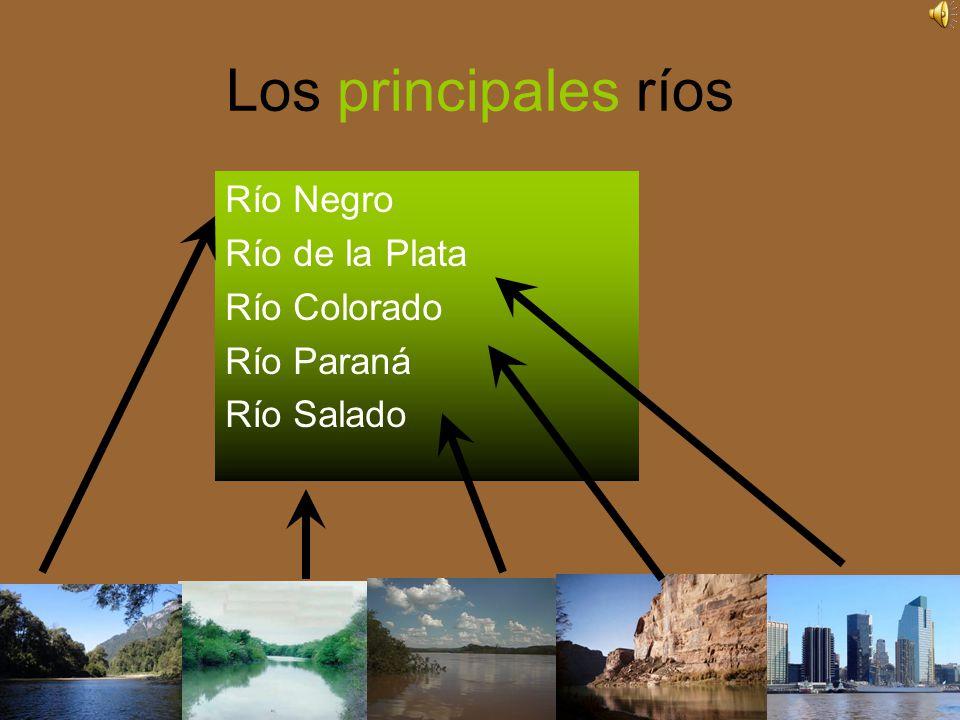 Los principales ríos Río Negro Río de la Plata Río Colorado Río Paraná
