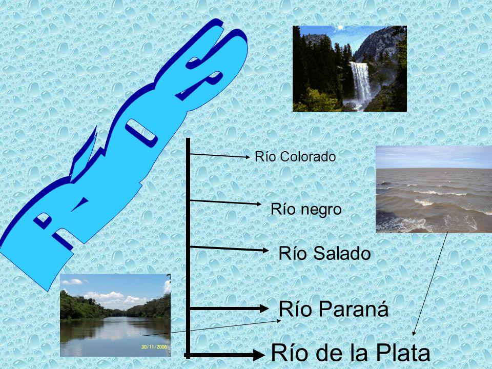 Ríos Río Colorado Río negro Río Salado Río Paraná Río de la Plata