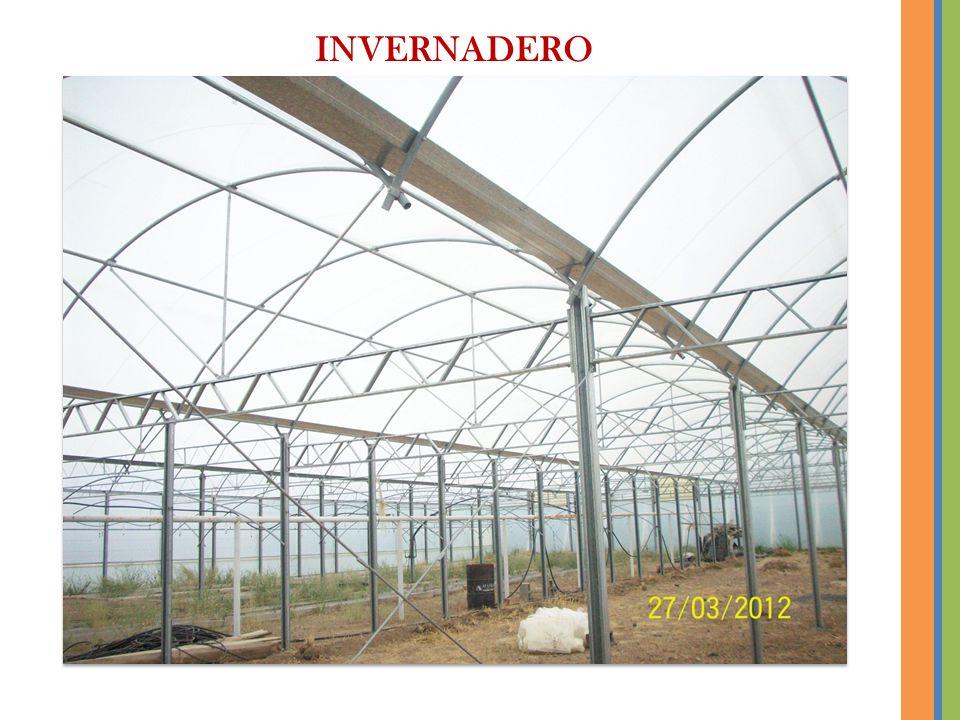 INVERNADERO