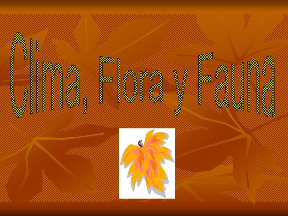 Clima, Flora y Fauna