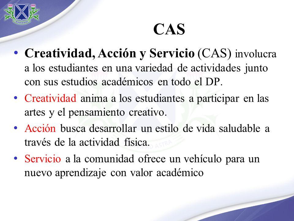 CAS Creatividad, Acción y Servicio (CAS) involucra a los estudiantes en una variedad de actividades junto con sus estudios académicos en todo el DP.