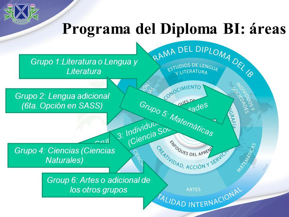 Programa del Diploma BI: áreas