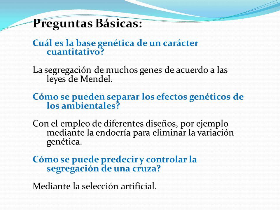 Preguntas Básicas: Cuál es la base genética de un carácter cuantitativo La segregación de muchos genes de acuerdo a las leyes de Mendel.