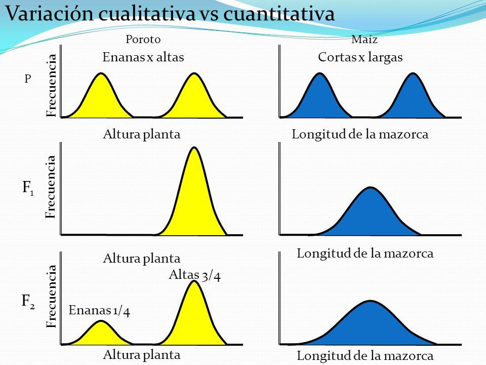 Variación cualitativa vs cuantitativa