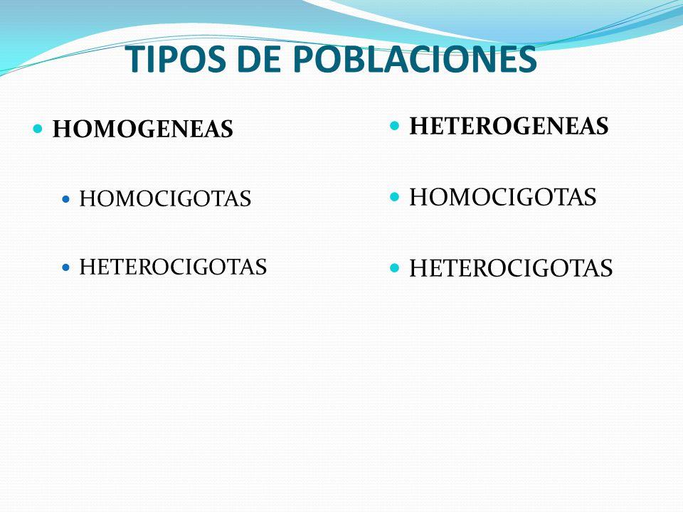 TIPOS DE POBLACIONES HETEROGENEAS HOMOGENEAS HOMOCIGOTAS HETEROCIGOTAS