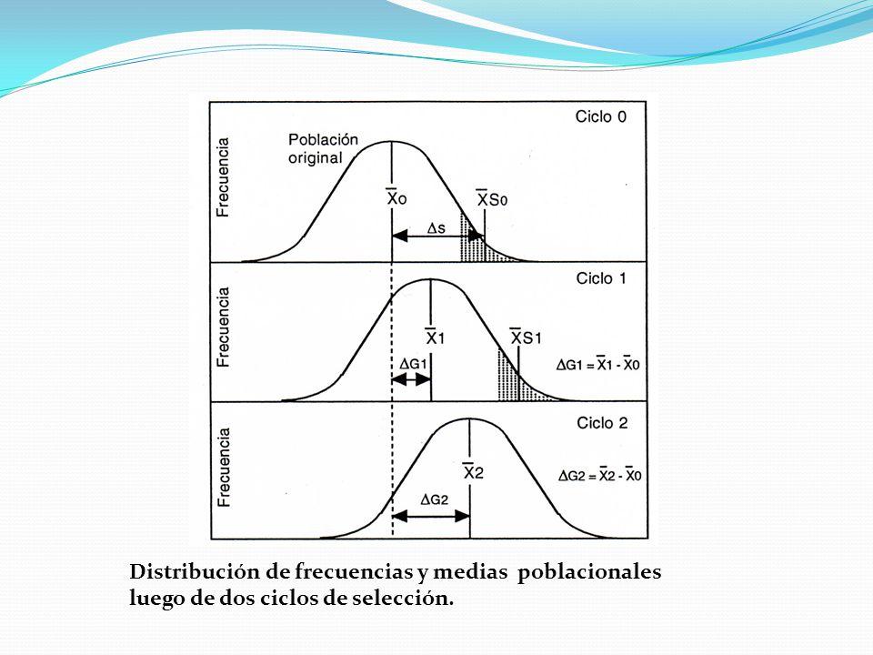 Distribución de frecuencias y medias poblacionales