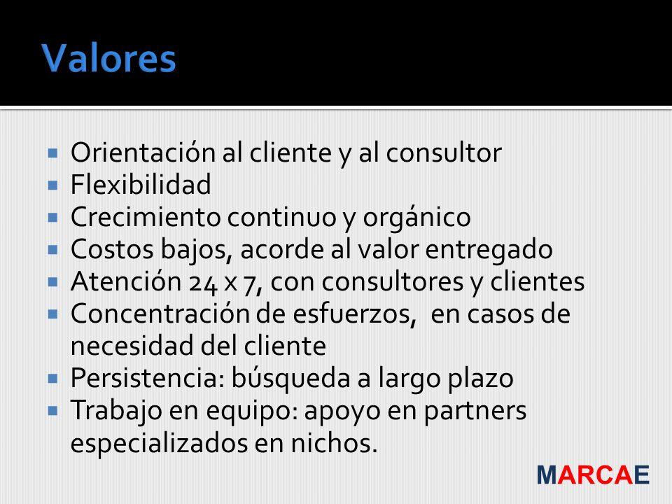 Valores Orientación al cliente y al consultor Flexibilidad