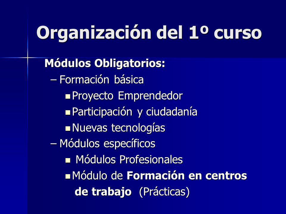 Organización del 1º curso