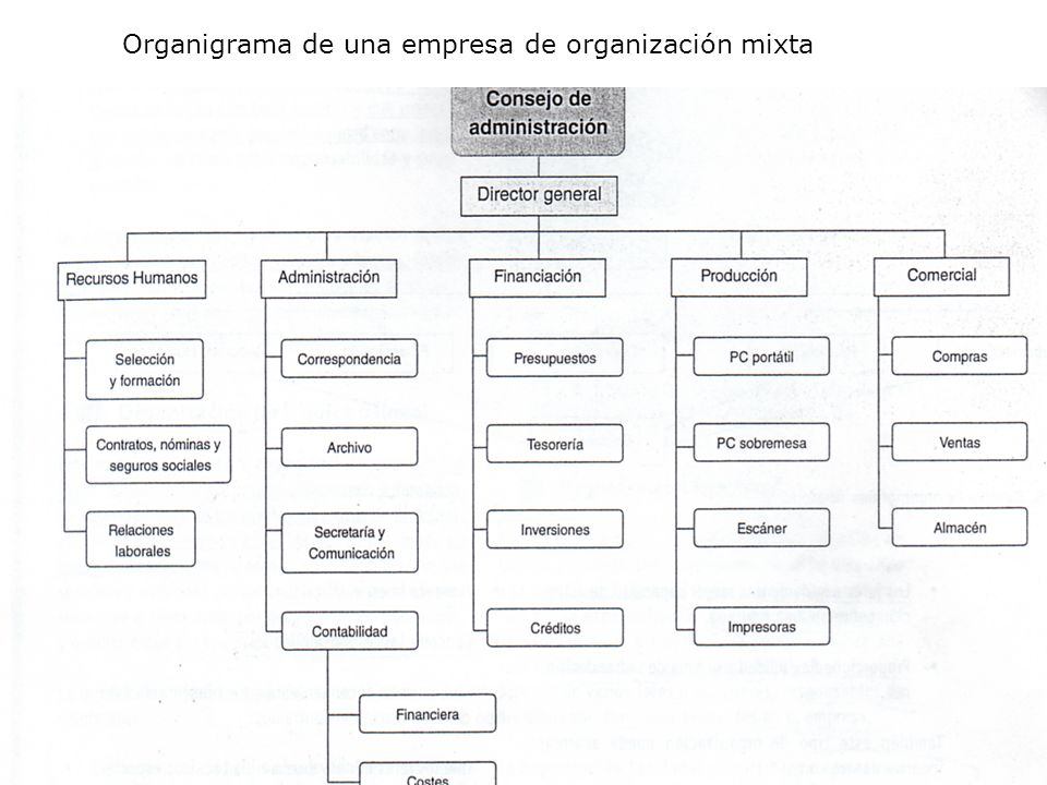 Organigrama de una empresa de organización mixta