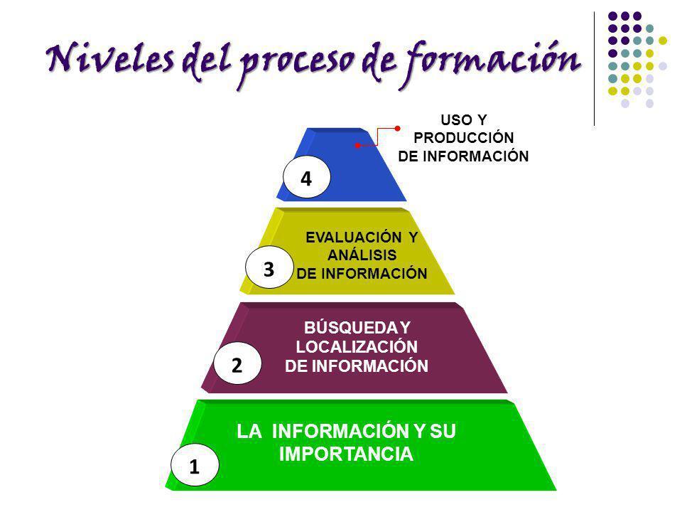 Niveles del proceso de formación