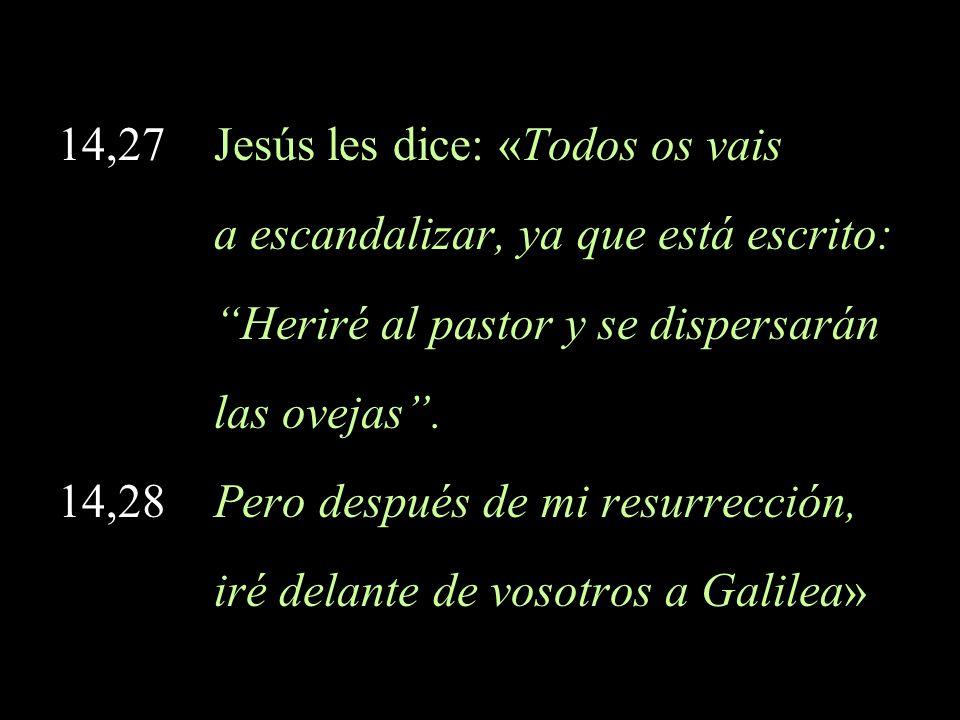 14,27 Jesús les dice: «Todos os vais