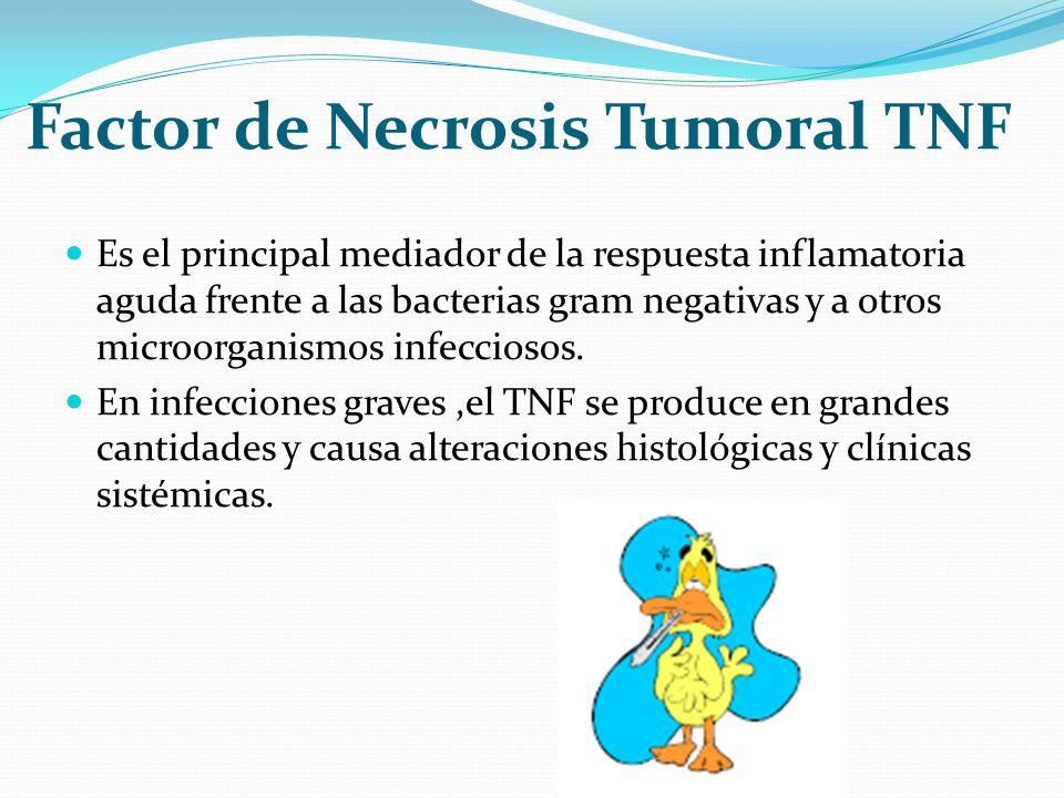 Factor de Necrosis Tumoral TNF