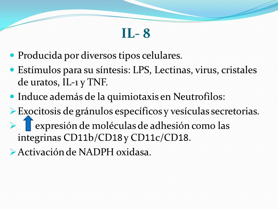 IL- 8 Producida por diversos tipos celulares.