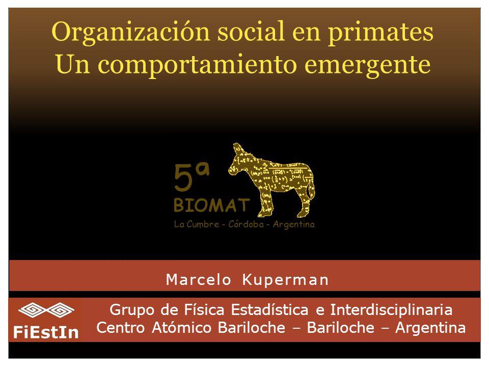 Organización social en primates Un comportamiento emergente