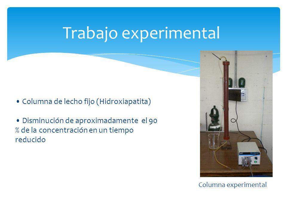 Trabajo experimental • Columna de lecho fijo (Hidroxiapatita)