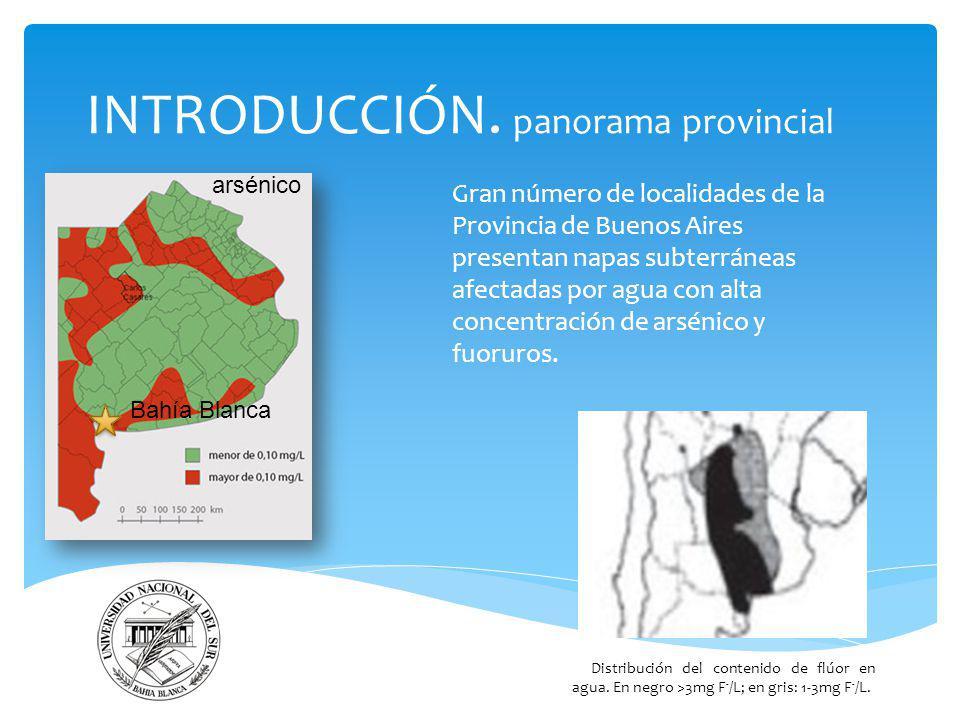 INTRODUCCIÓN. panorama provincial