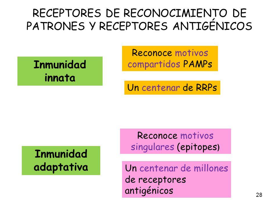 RECEPTORES DE RECONOCIMIENTO DE PATRONES Y RECEPTORES ANTIGÉNICOS