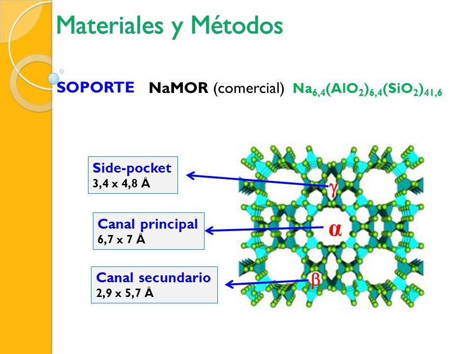 Materiales y Métodos α g b SOPORTE NaMOR (comercial)