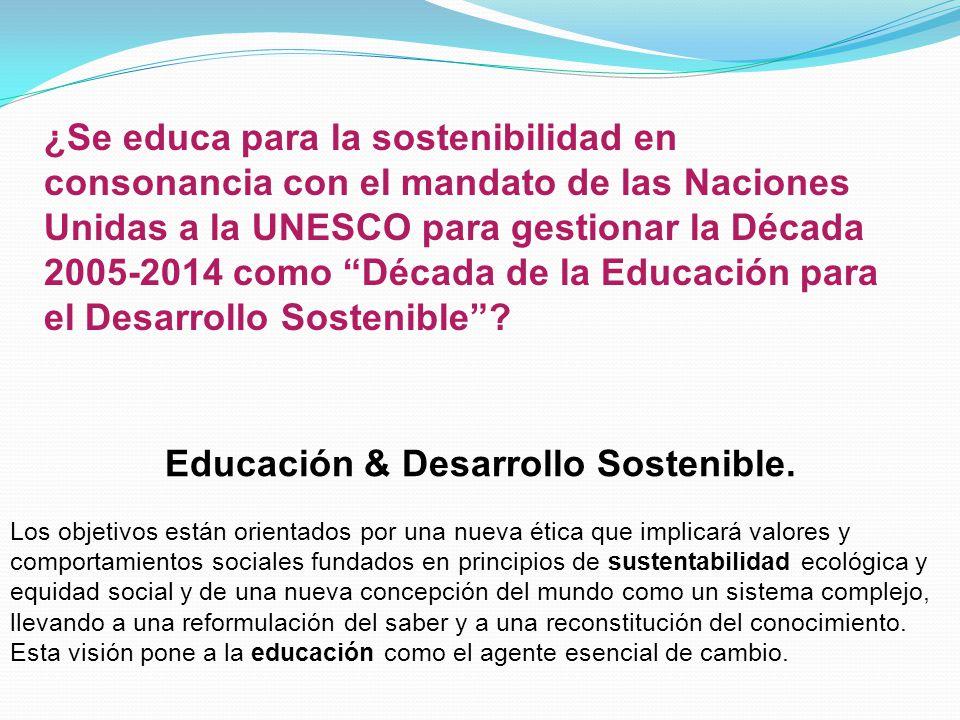 Educación & Desarrollo Sostenible.