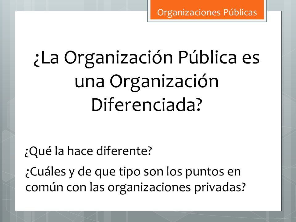 ¿La Organización Pública es una Organización Diferenciada