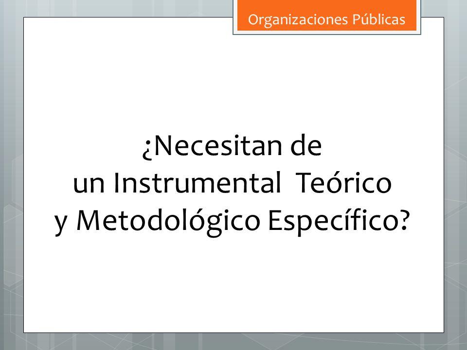 un Instrumental Teórico y Metodológico Específico