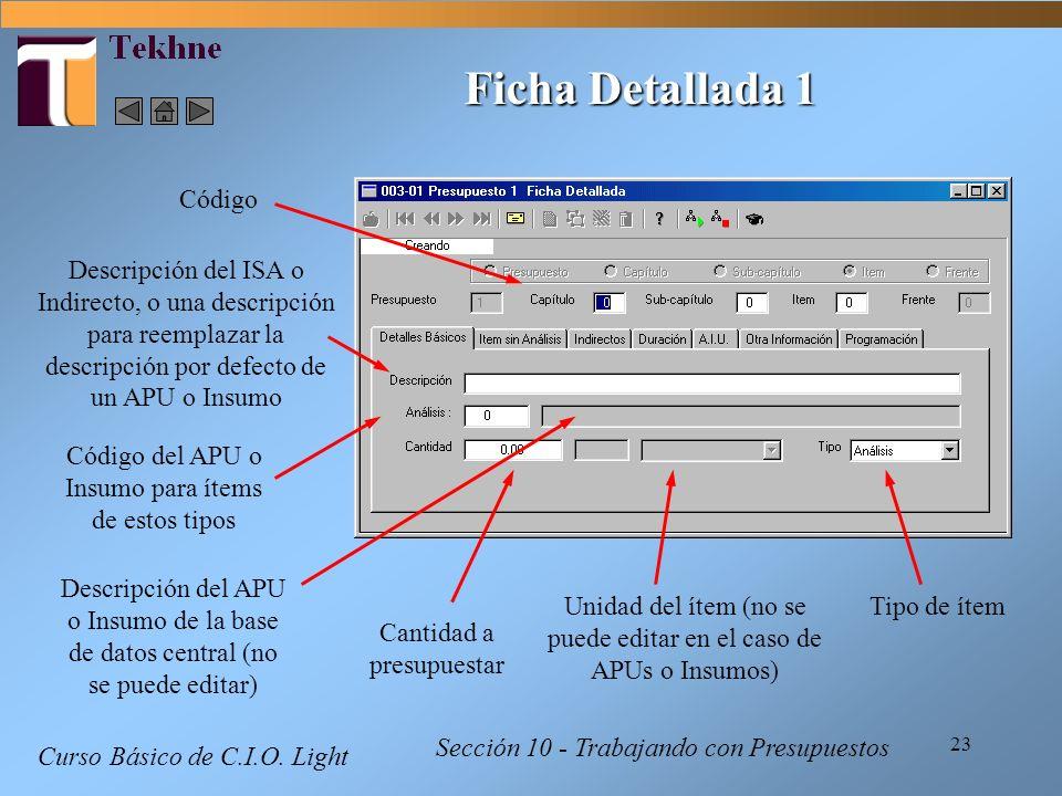 Ficha Detallada 1 Código