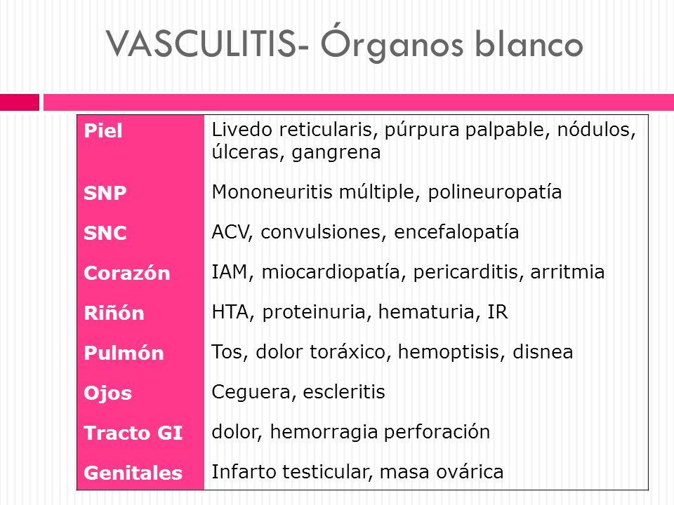 VASCULITIS- Órganos blanco