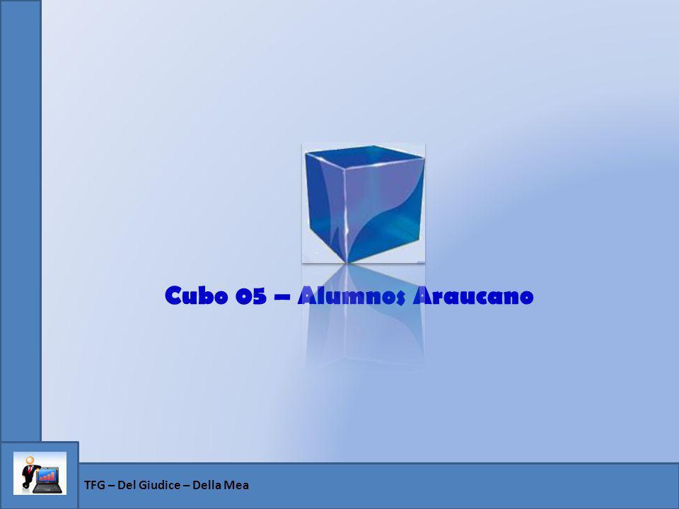 Cubo 05 – Alumnos Araucano