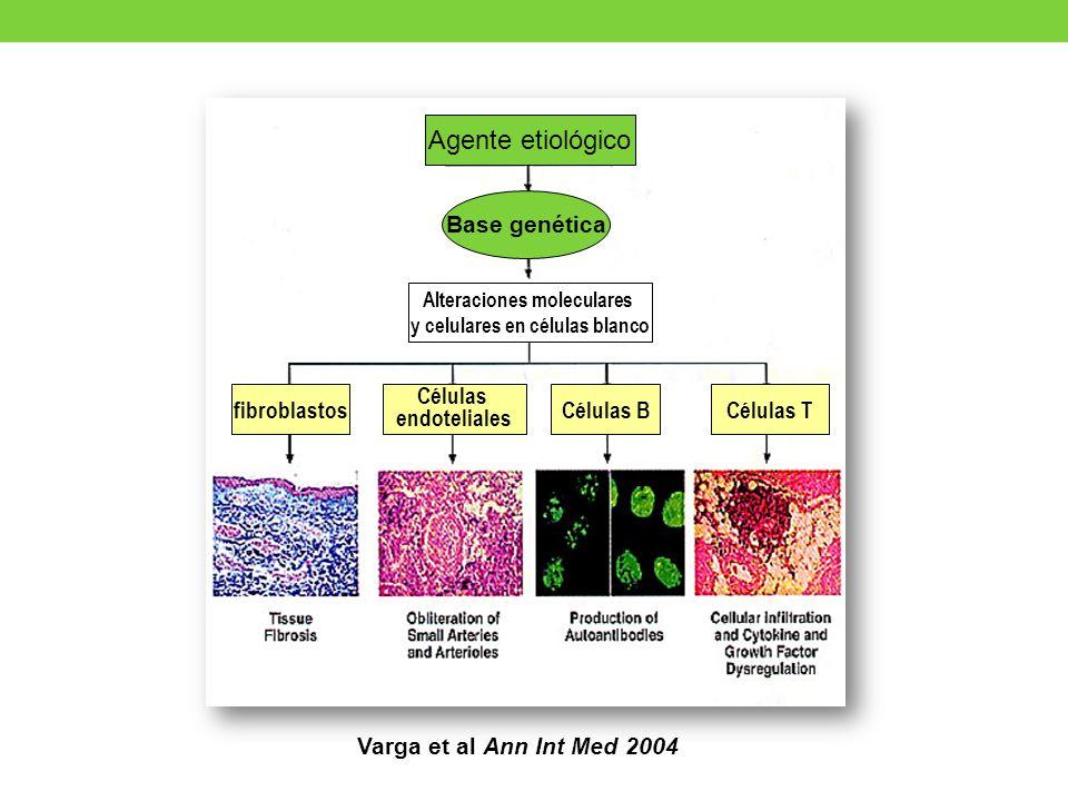 Alteraciones moleculares y celulares en células blanco
