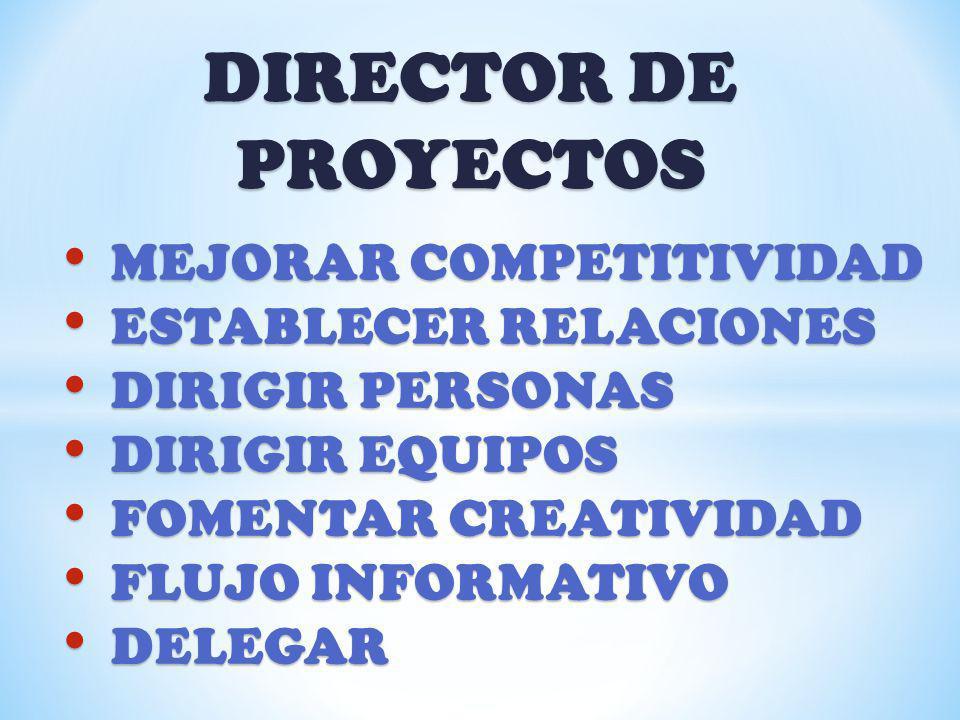 DIRECTOR DE PROYECTOS MEJORAR COMPETITIVIDAD ESTABLECER RELACIONES