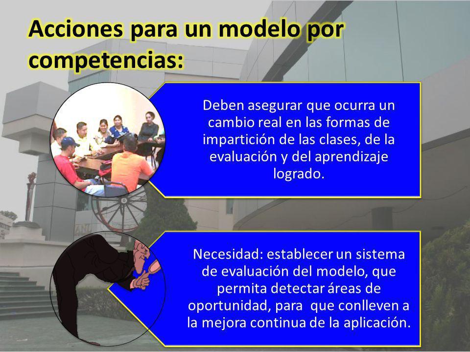 Acciones para un modelo por competencias: