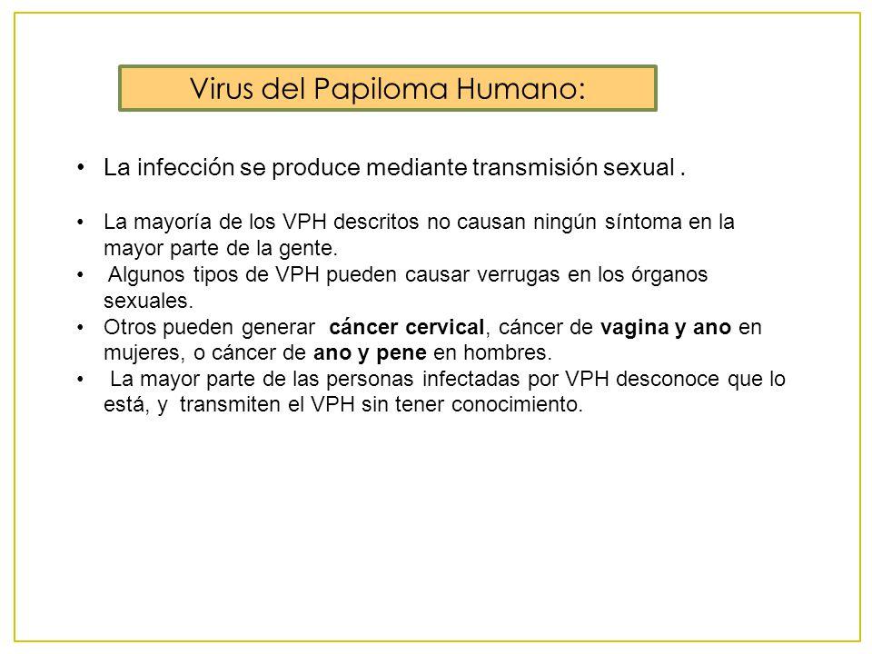 Virus del Papiloma Humano: