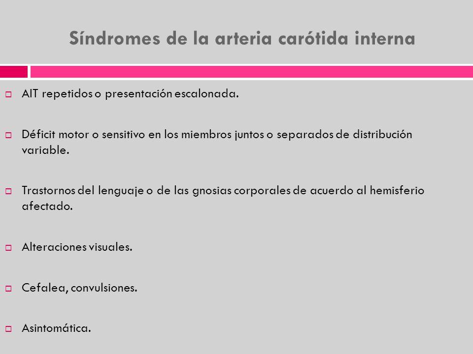 Síndromes de la arteria carótida interna