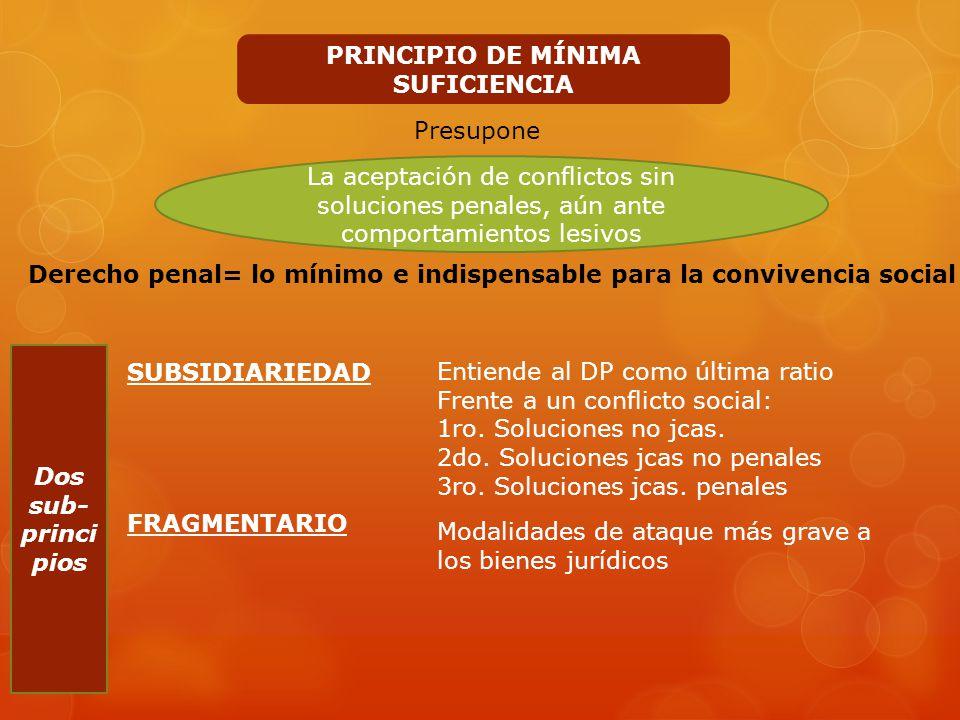 PRINCIPIO DE MÍNIMA SUFICIENCIA