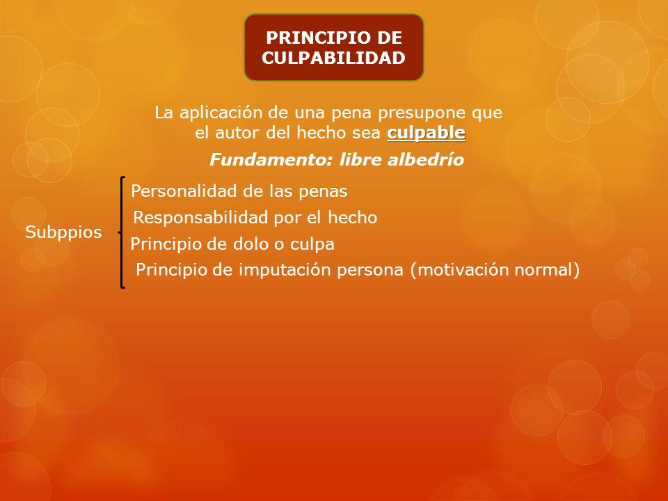 PRINCIPIO DE CULPABILIDAD