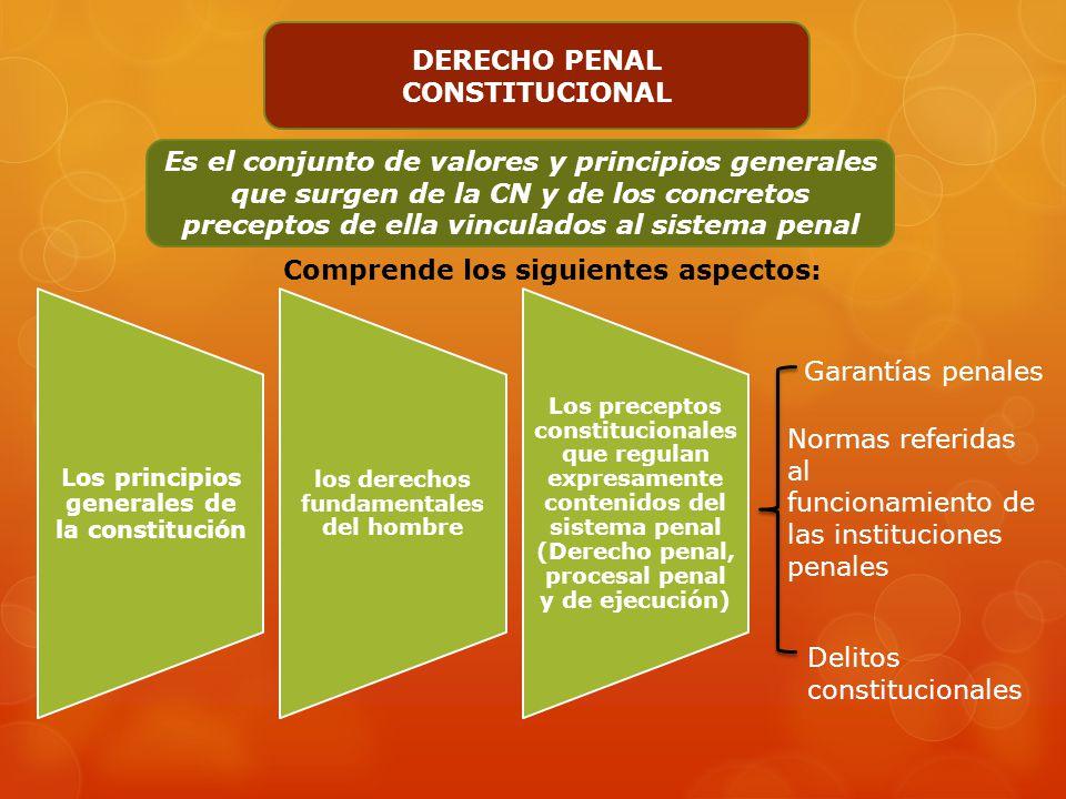 DERECHO PENAL CONSTITUCIONAL
