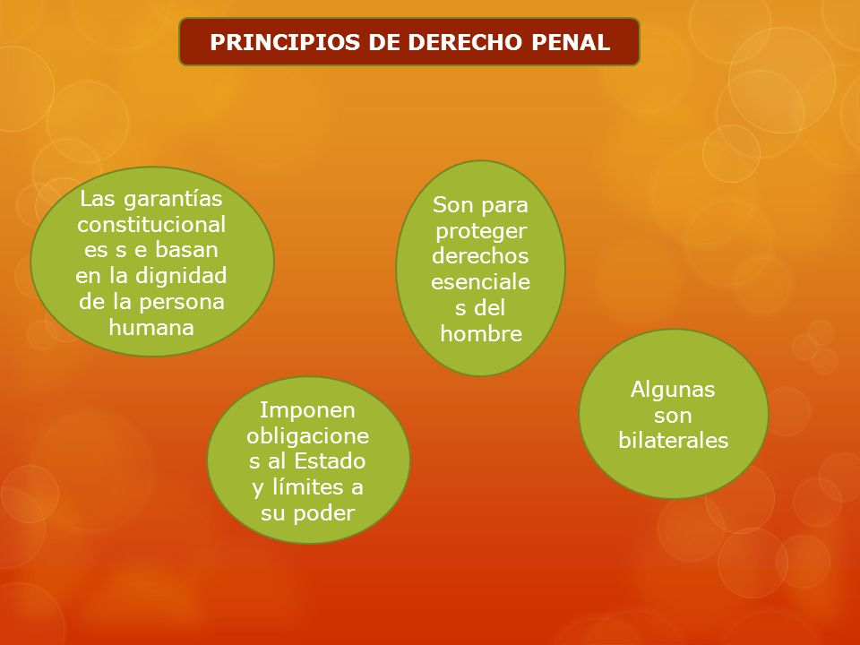 PRINCIPIOS DE DERECHO PENAL