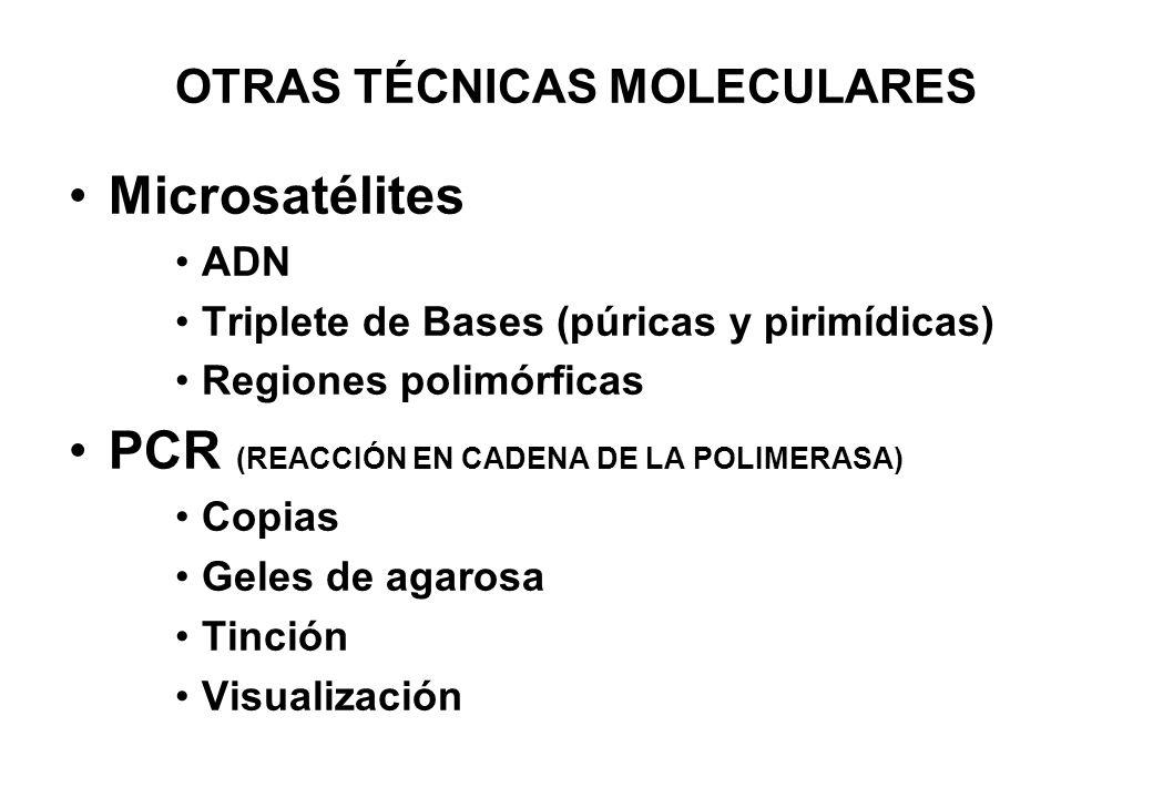 OTRAS TÉCNICAS MOLECULARES