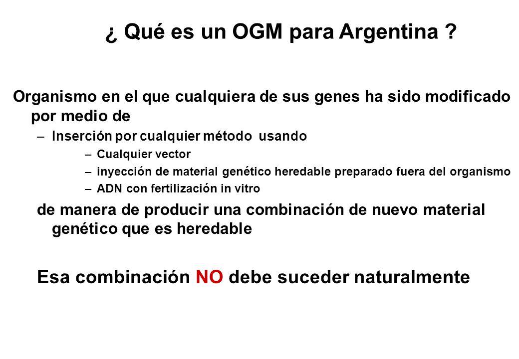 ¿ Qué es un OGM para Argentina