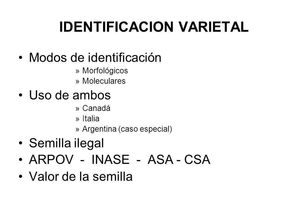 IDENTIFICACION VARIETAL
