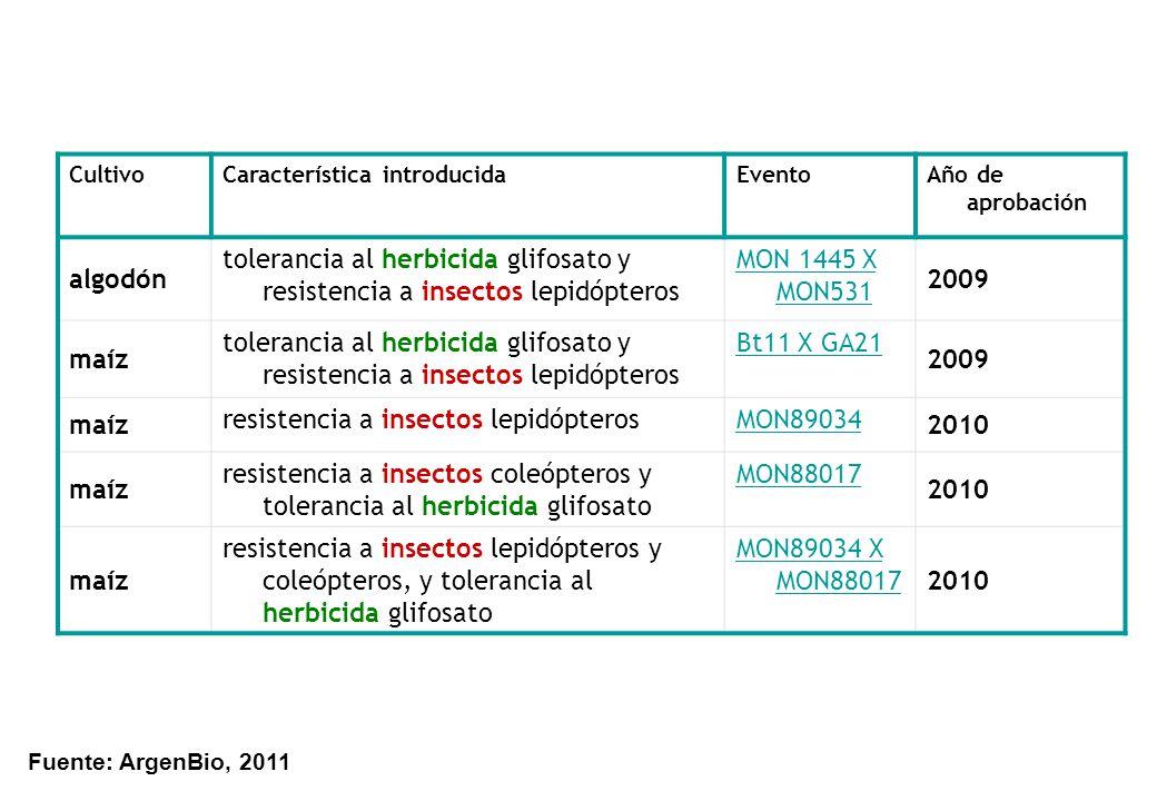 resistencia a insectos lepidópteros MON89034 2010