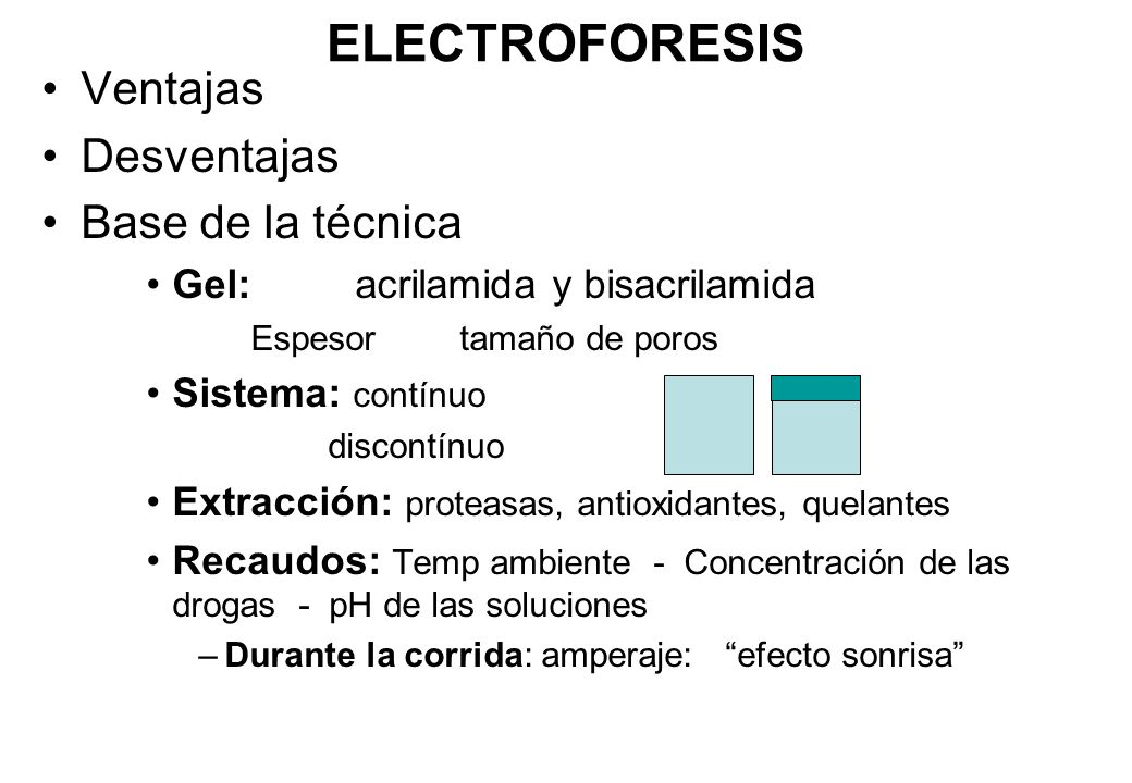 ELECTROFORESIS Ventajas Desventajas Base de la técnica