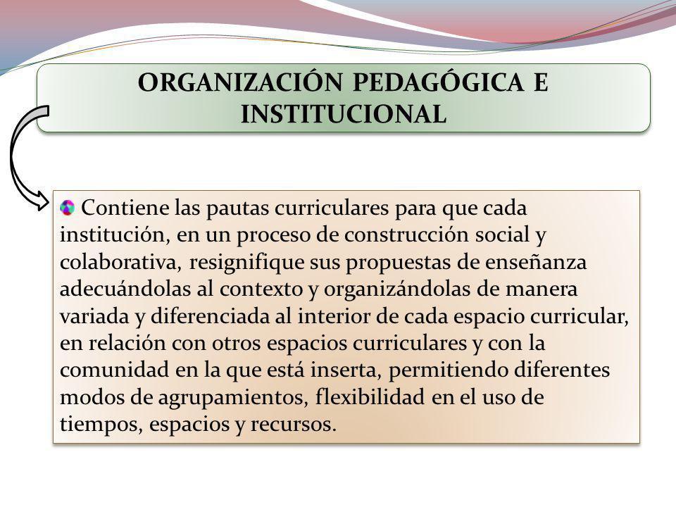 ORGANIZACIÓN PEDAGÓGICA E INSTITUCIONAL