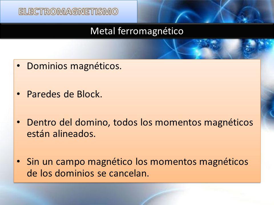 Dentro del domino, todos los momentos magnéticos están alineados.