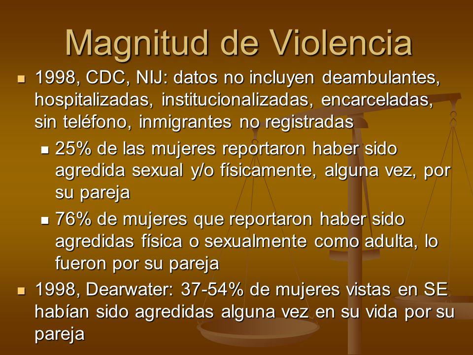 Magnitud de Violencia