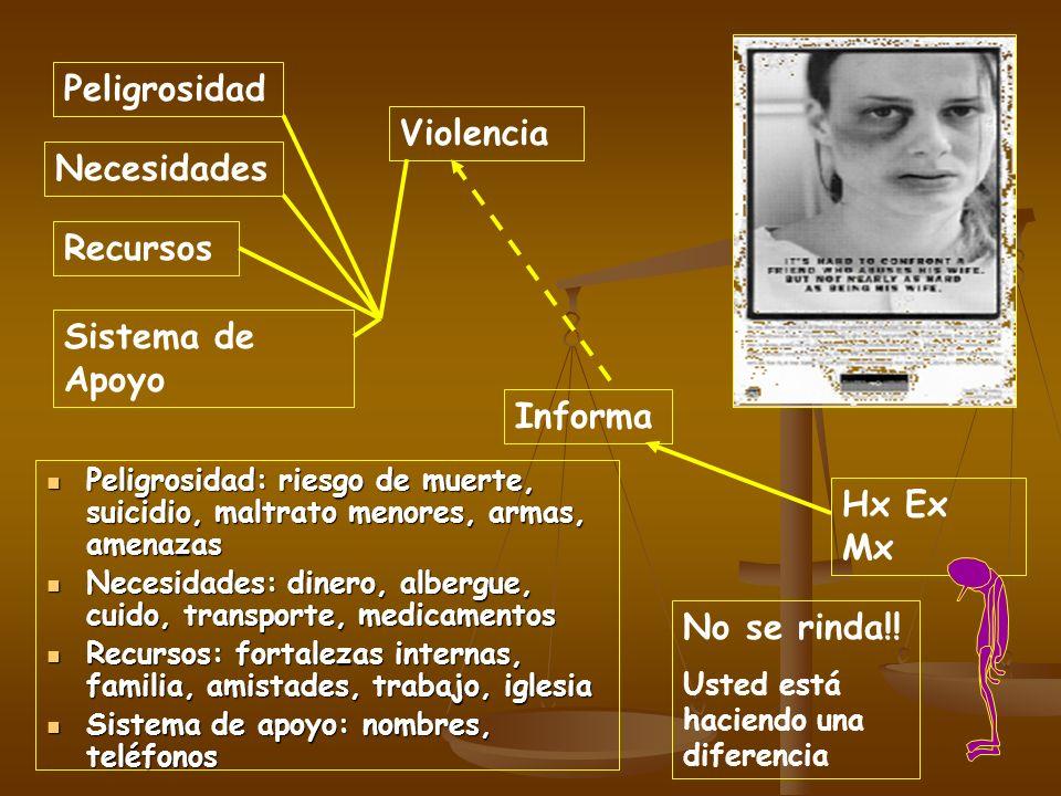 Peligrosidad Violencia Necesidades Recursos Sistema de Apoyo Informa