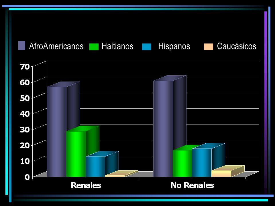 AfroAmericanos Haitianos Hispanos Caucásicos