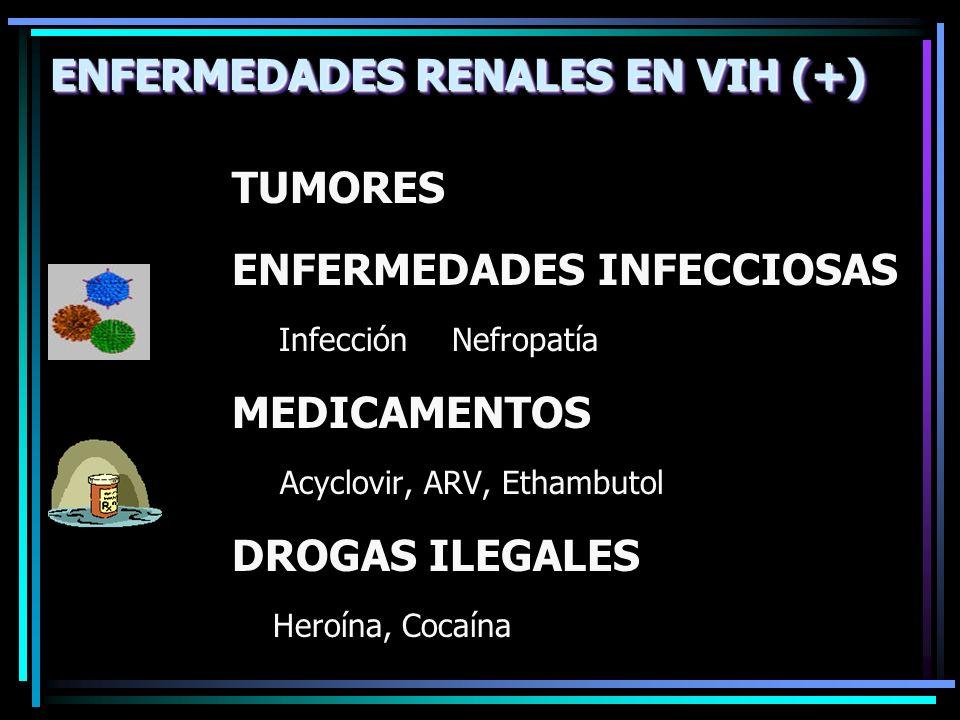 ENFERMEDADES RENALES EN VIH (+)
